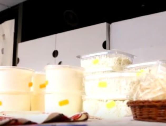 У Луцьку влаштували ярмарку сирів. ВІДЕО