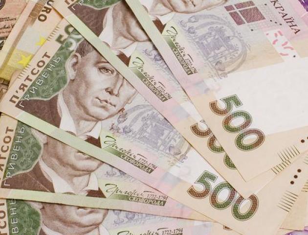Волинські митники розповіли, як можна поповнити державний бюджет