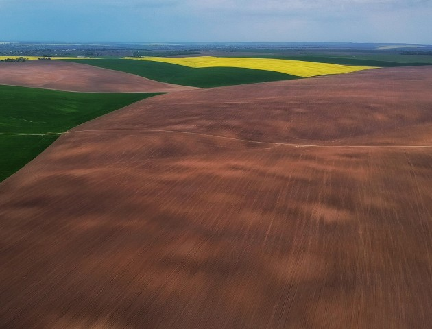Весняні кольори полів від волинського фотографа. ФОТО