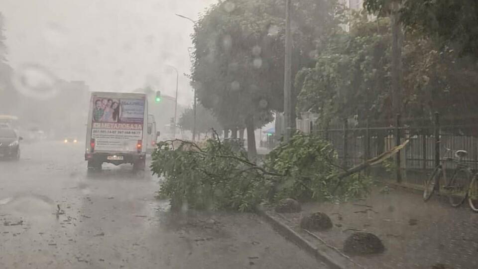 У Володимирі-Волинському пройшла злива з сильним вітром. Повалило дерева