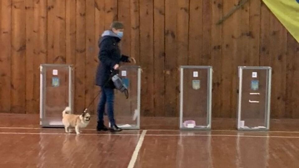 Собака, селфі, подарунки: курйози з виборчих дільниць на Волині