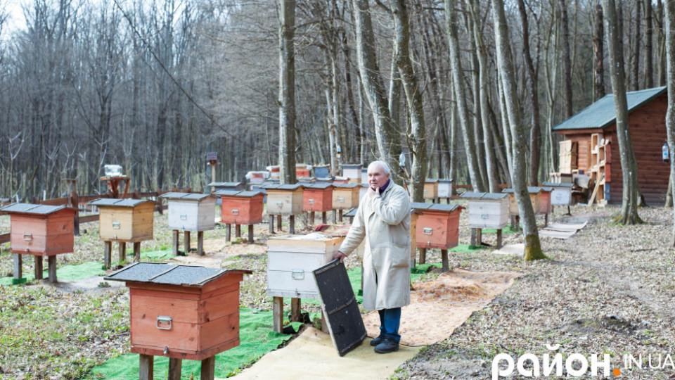 Килими в лісі та солона вода для бджіл: 70-річний волинянин поділився секретами медової справи. ФОТО