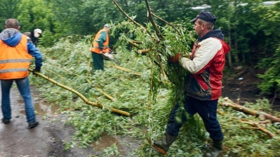 Через погану погоду в Луцьку перенесли толоку