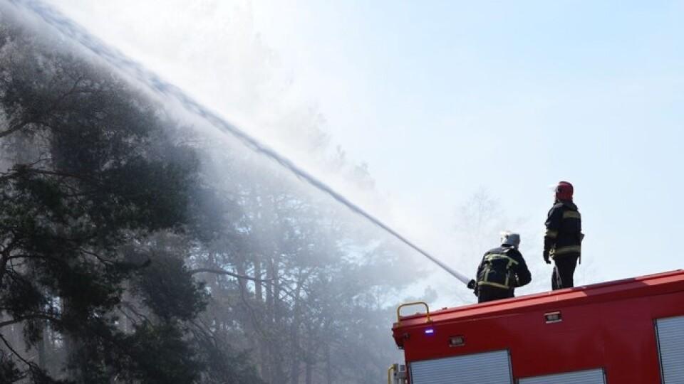 На Волині рятувальники і лісівники тренувалися разом гасити масштабну пожежу
