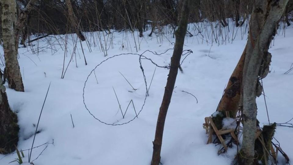 У волинських лісах активізувалися браконьєри. ВІДЕО