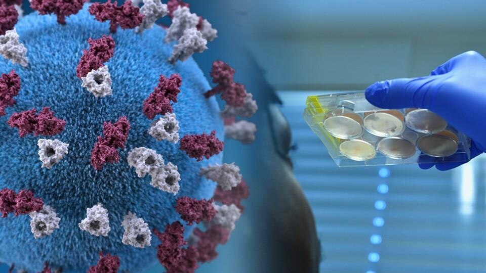 Україна займає 9 місце у світі за новими інфікуваннями COVID