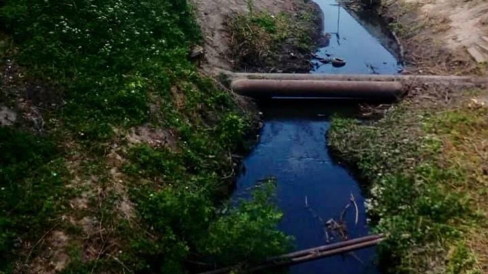 Показали, як почистили Сапалаївку в Луцьку