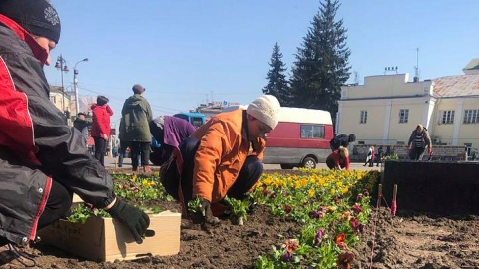У Луцьку взялися прикрашати центр міста квітами. ФОТО
