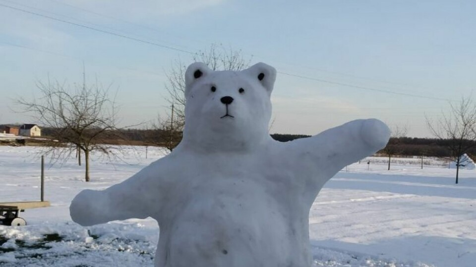 У селі на Волині зліпили двометрового снігового ведмедя