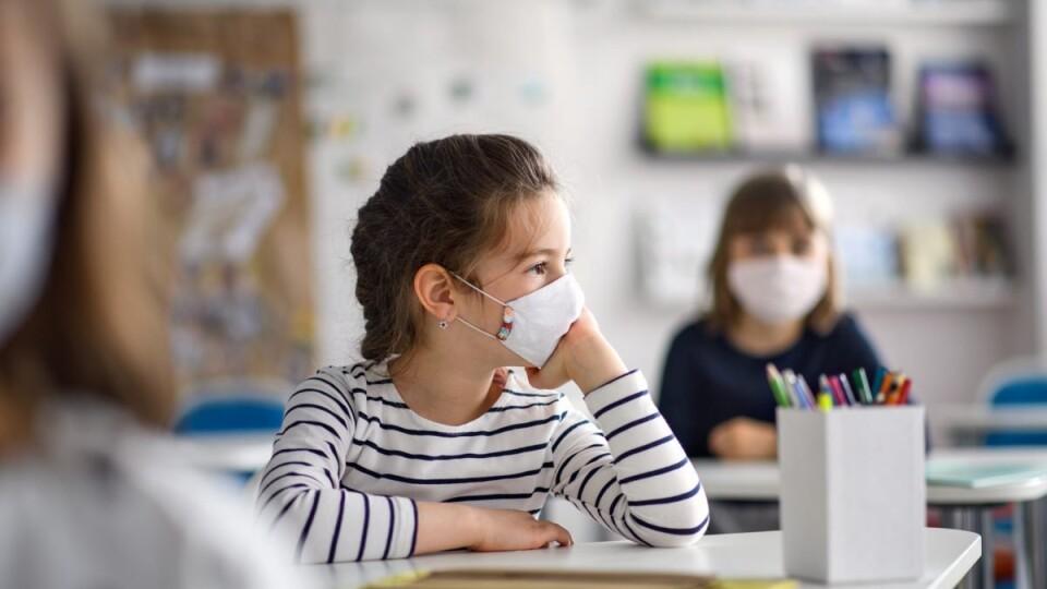 Освіта і карантин: як працюватимуть волинські школи з 1 вересня