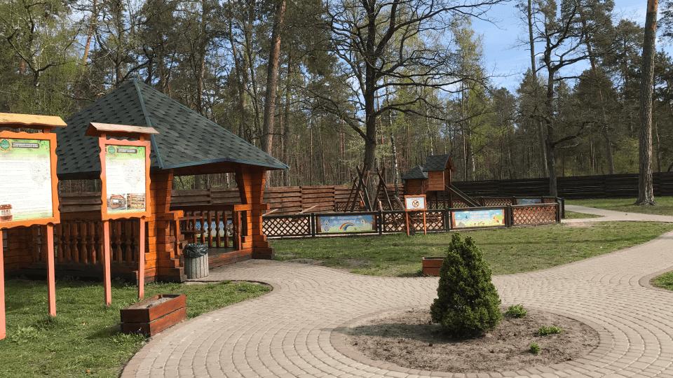 На Волині понад 600 відпочинкових «родзинок» в лісах.  Розповіли про найкомфортніші