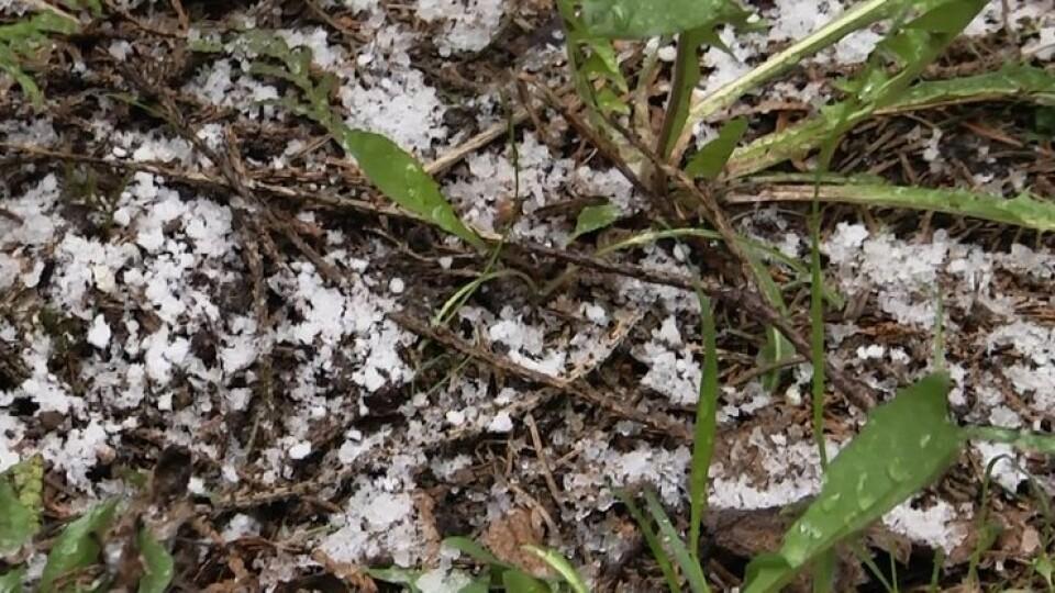 «Це один із весняних рекордів», – синоптик про сніг у Луцьку 26 квітня