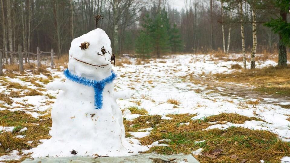 2020-й увійде до п'ятірки найтепліших років, – очільник Укргідрометцентру
