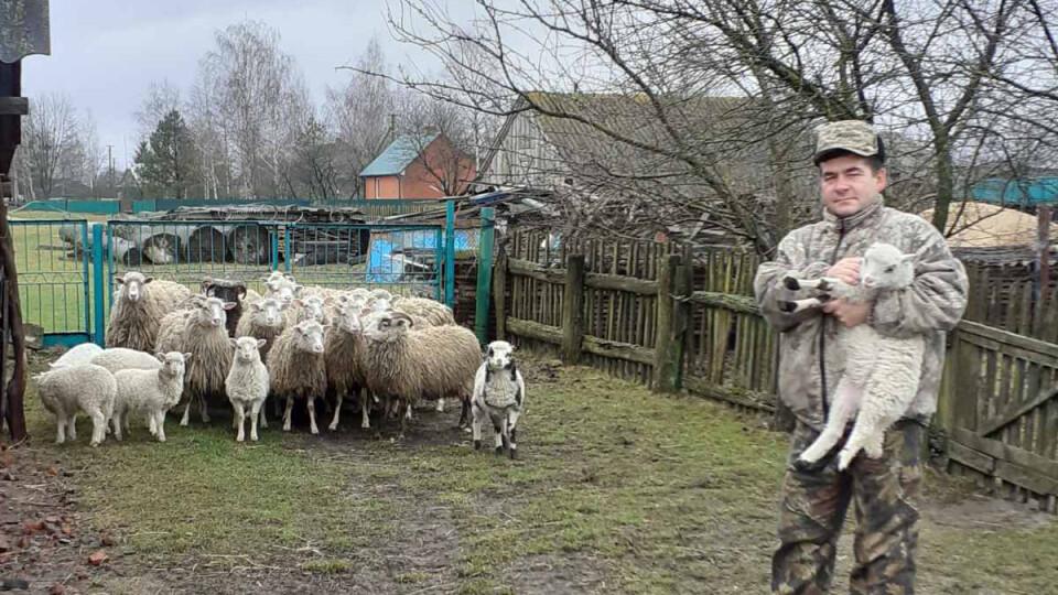 «Нема куди здати шерсті». Про що мріє вівчар із села на Волині, яке мало вівчарську славу