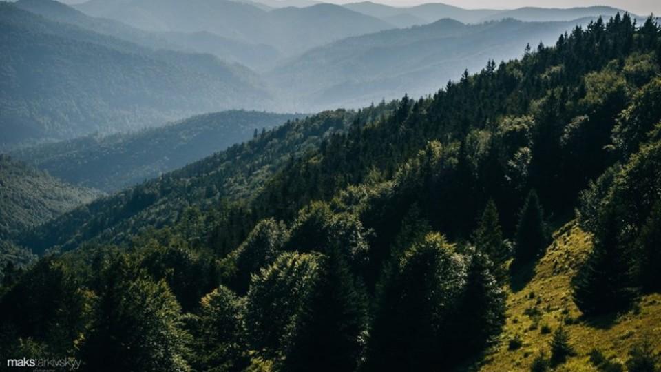 Мандрівка в гори: сонячні світлини луцького фотографа. ФОТО