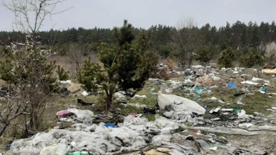 Волинські ліси перетворюються на сміттєві полігони. Що з цим робити?