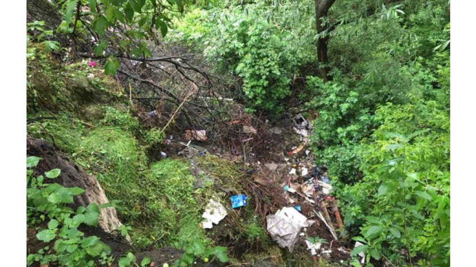 Біля річки Стир виявили стихійне сміттєзвалище