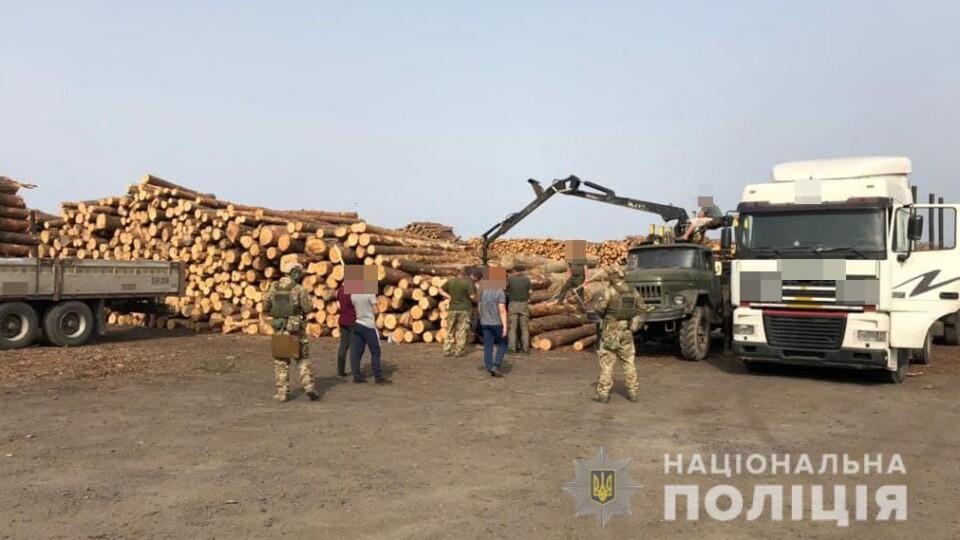 «Кримінал» через незаконні рубки лісу: на ковельському підприємстві тривають обшуки