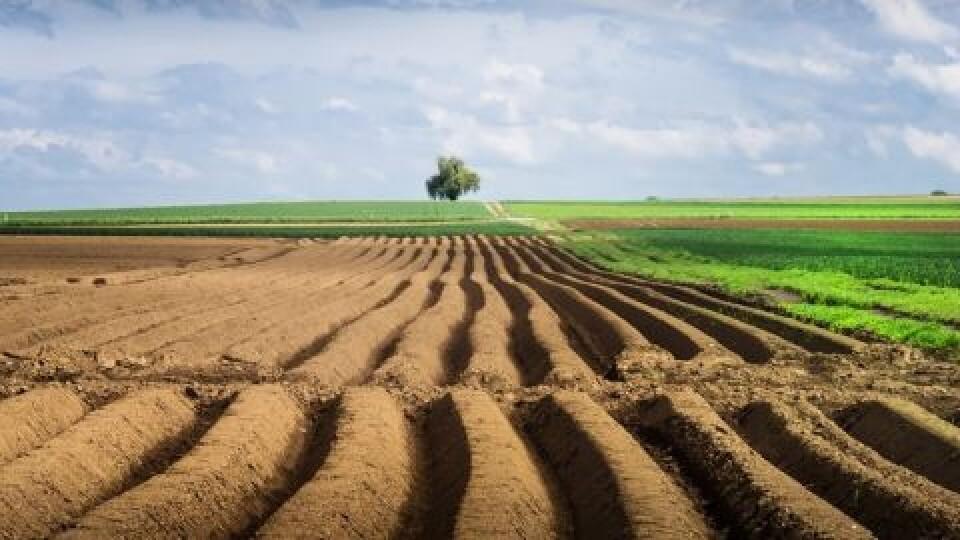 Проблеми із землею у волинян – через корупцію в Держгеокадастрі, – голова Луцької райради