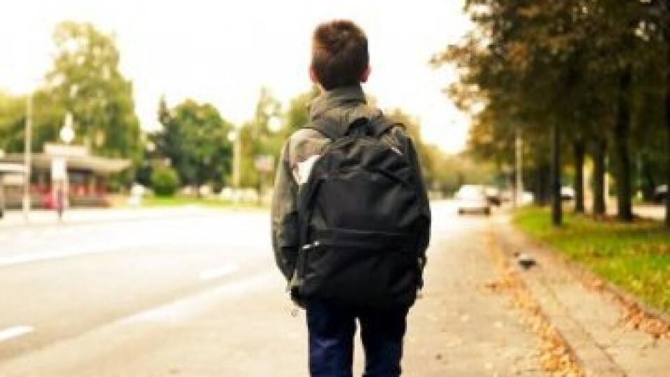 Знайшли школяра, який загубився у Володимирі