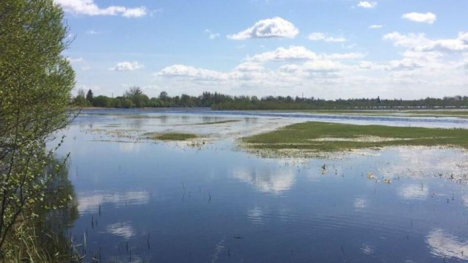 Вода підніматиметься, два райони на Волині і далі топитиме, – прогноз синоптиків