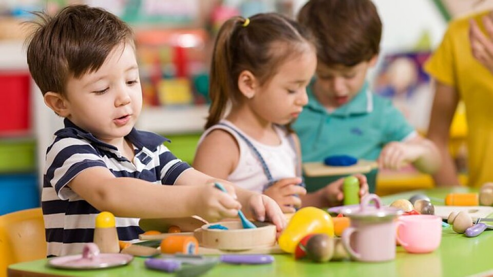 Які дитячі садочки мають працювати влітку у Луцьку