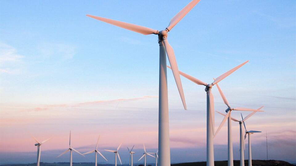 Мільйони євро інвестицій і сотні робочих місць. На Волині хочуть побудувати вітрову електростанцію