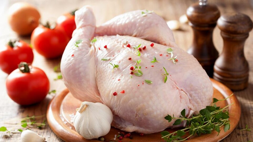 Волинські підприємства – серед найбільших виробників курятини в Україні