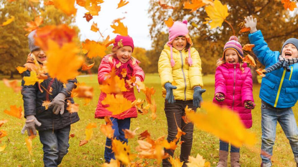 Стало відомо, чи розпочнуться осінні канікули для школярів Луцька на тиждень раніше