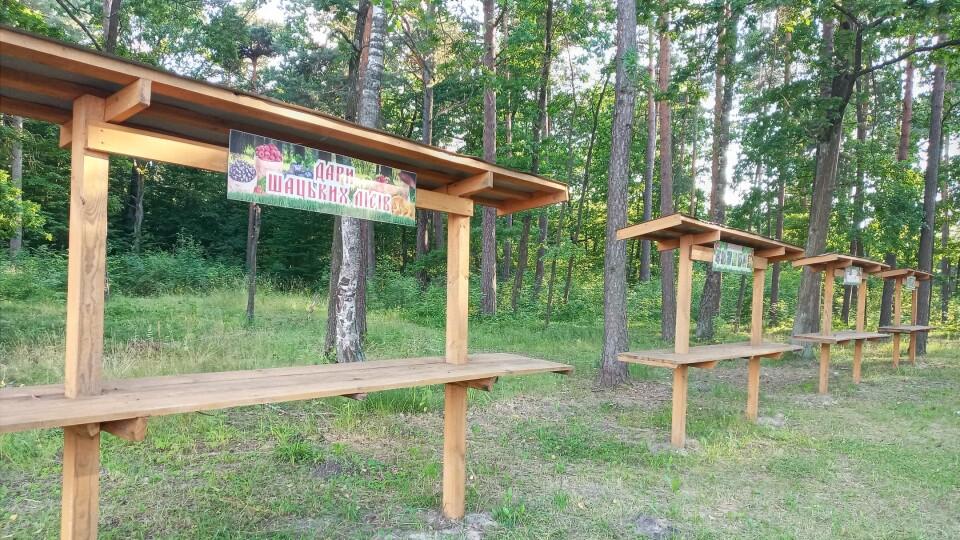 У Шацьку облаштували спеціальні місця для торгівлі ягодами та грибами