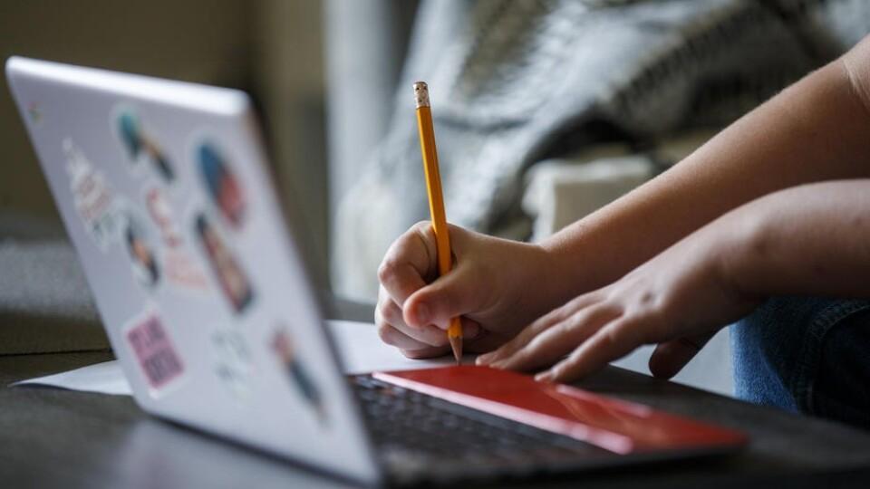 У Володимир-Волинській громаді школи ідуть на дистанційне навчання