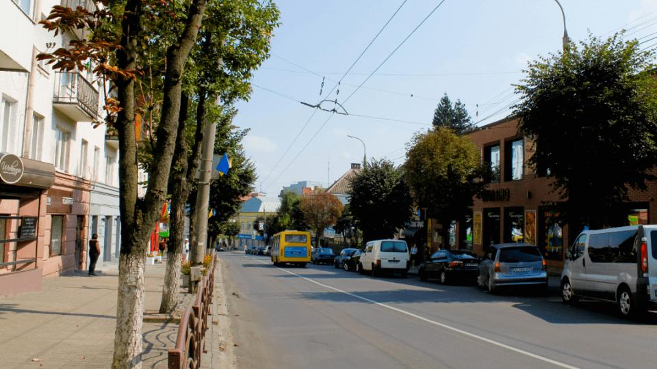 У Луцьку частину вулиці Винниченка хочуть перейменувати