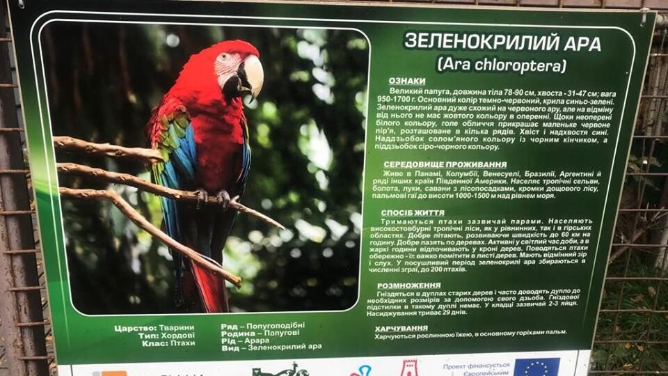 З Луцького зоопарку вкрали папуг. Просять допомоги у їх пошуку