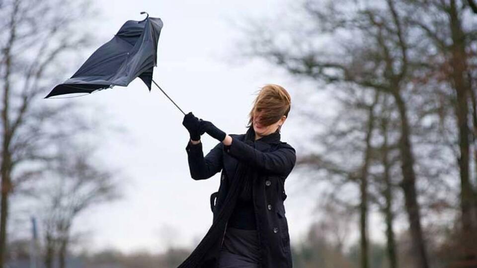 Штормове попередження. У 9 областях України прогнозують сильний вітер