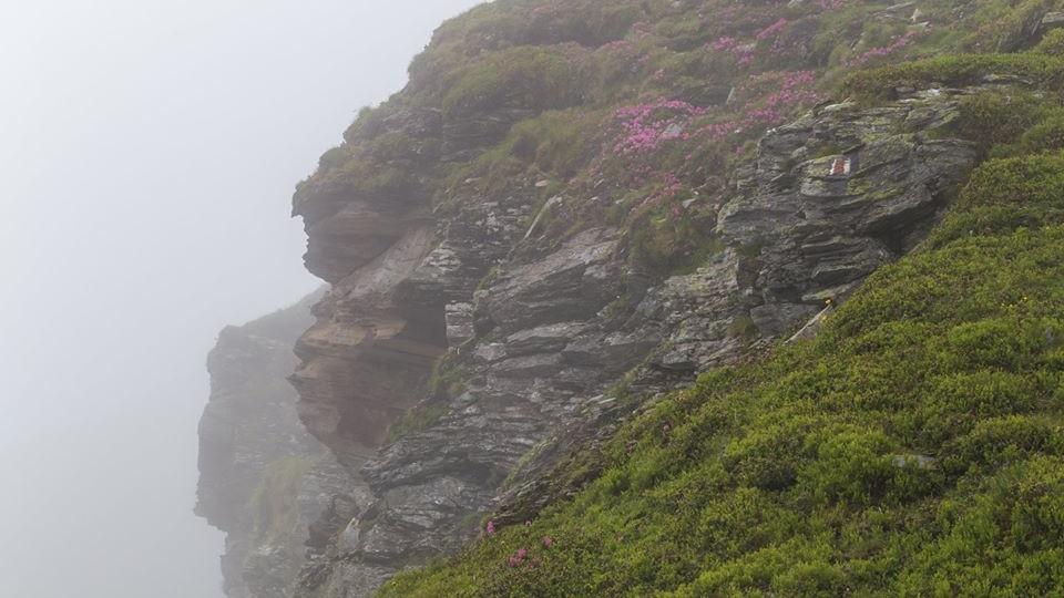 Карпатські тумани в об'єктиві луцького фотографа. ФОТО