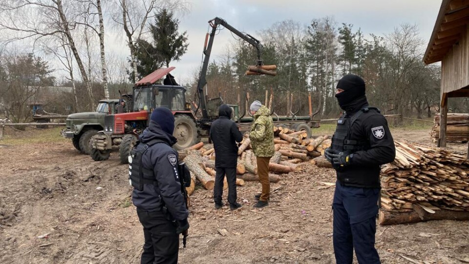 У Камінь-Каширському районі – масові обшуки. Підозрюють незаконну вирубку лісу
