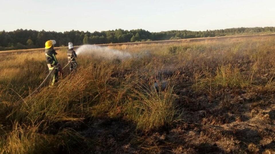 Через необережність на Волині згоріло понад два гектари сухої трави