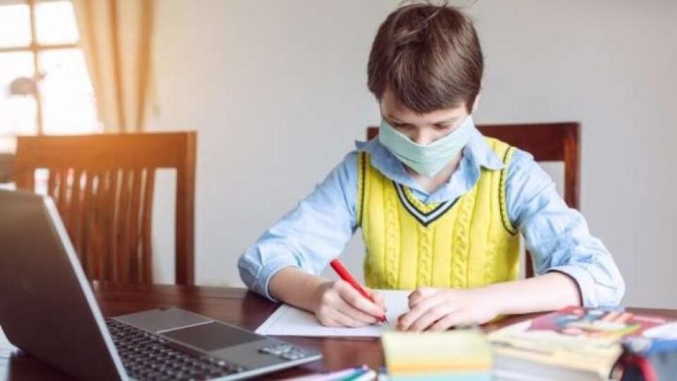 МОЗ і МОН рекомендують вишам та школам переходити на дистанційне навчання