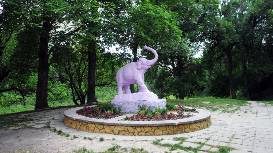 У Луцьку облагородять територію колишнього ботанічного саду на вулиці Шопена