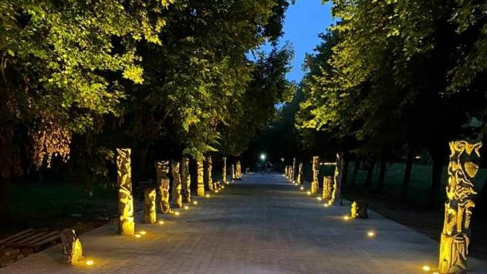 У Луцьку підсвітили алею скульптур Голованя. Що з того вийшло?