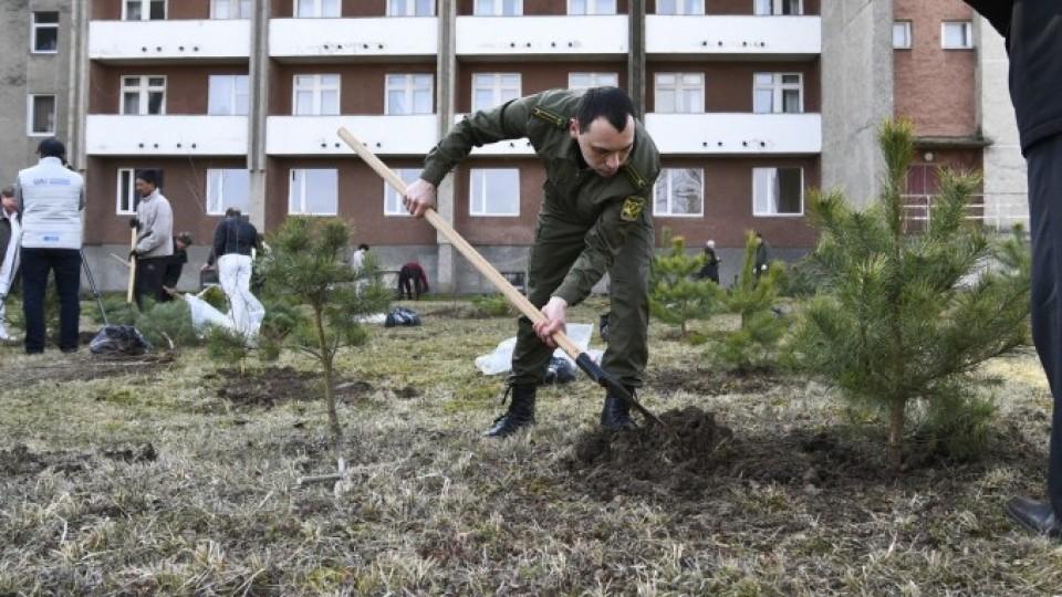 Під Луцьком створили парк для реабілітації українських воїнів. ФОТО