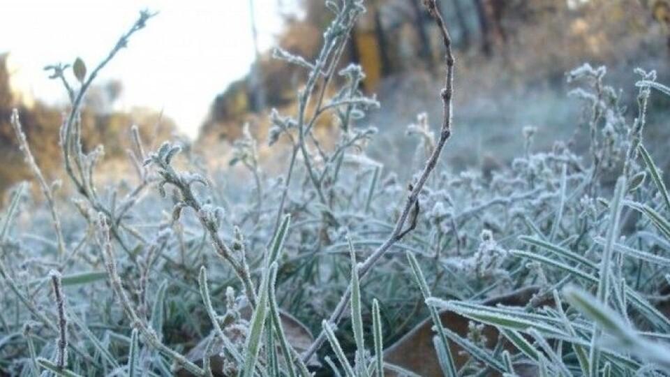 На Волині прогнозують нічні заморозки