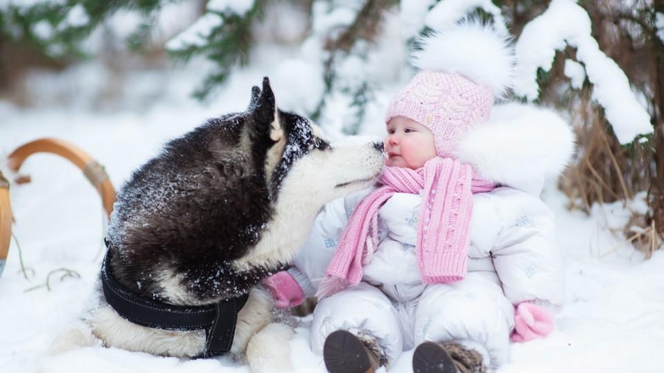 На Волині - справжня зима: синоптики обіцяють сніг і морози