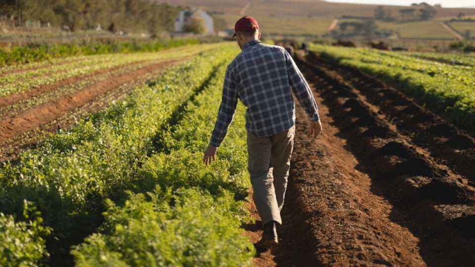 В Україні з'явилося нове професійне свято – День фермера