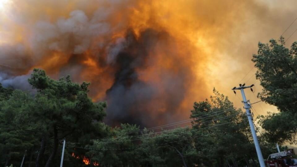 У Туреччині через масштабні пожежі евакуюють туристів з готелів