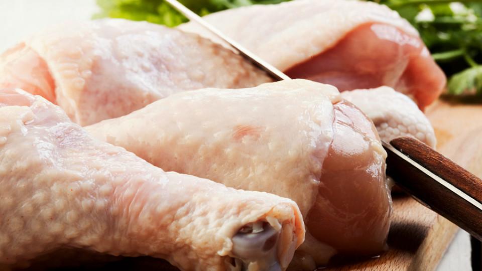 Волинські птахофабрики – серед найбільших в Україні експортерів курятини