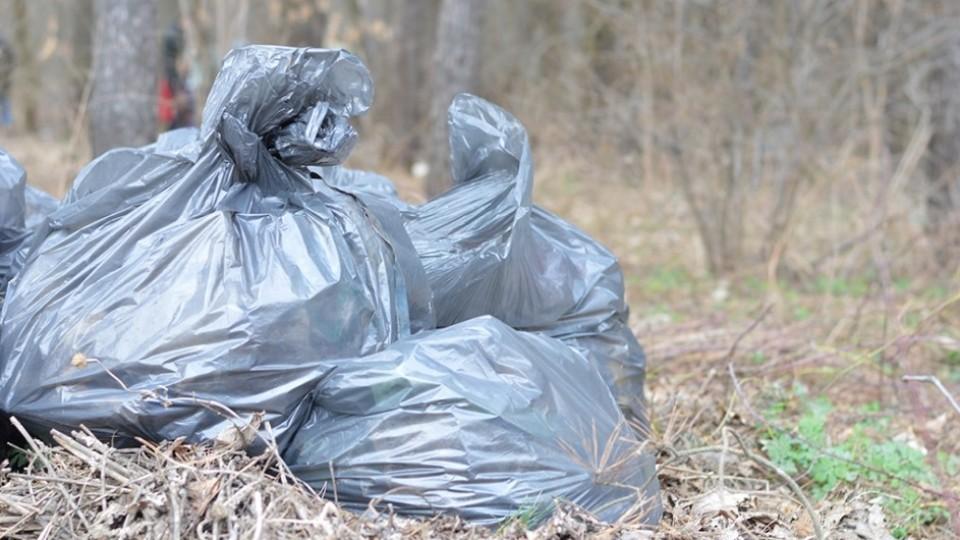 Як лісівники Волині борються зі «сміттєвим монстром». ФОТО
