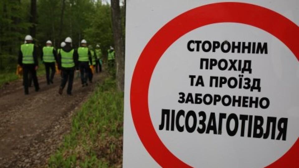 На Волині лісівників навчатимуть обирати безпечні методи роботи
