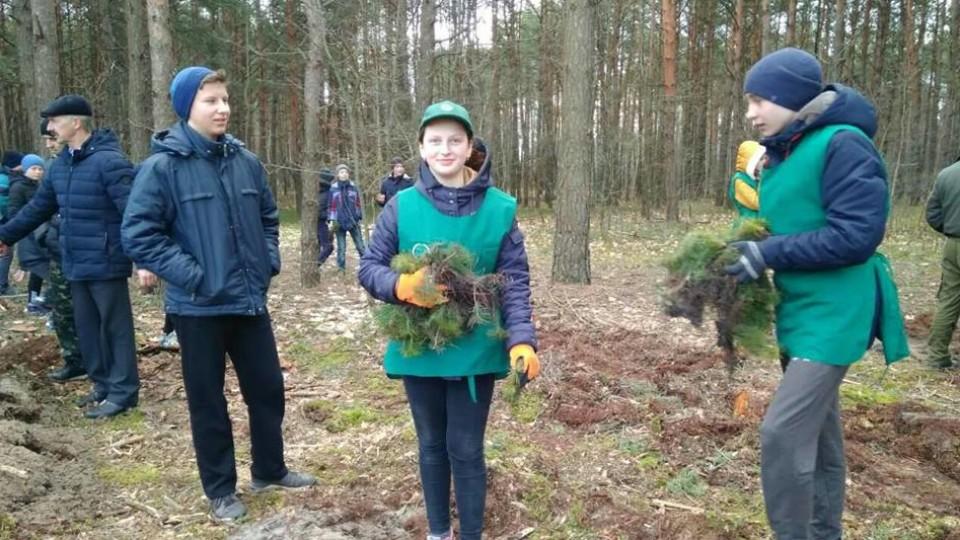 На Волині діти посадили майже гектар лісу. ФОТО