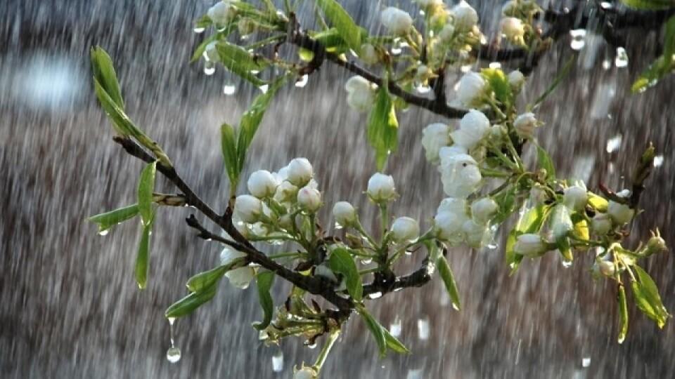 Дощ і холод: якою буде погода на Волині цього тижня